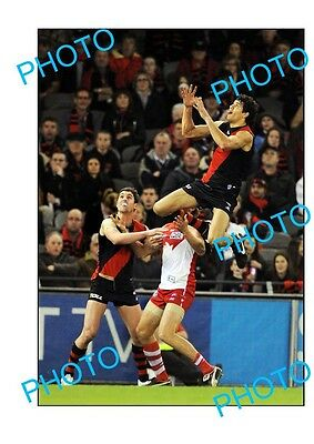 Paddy Ryder Essendon Fc Champion Large A3 'specky' Photo