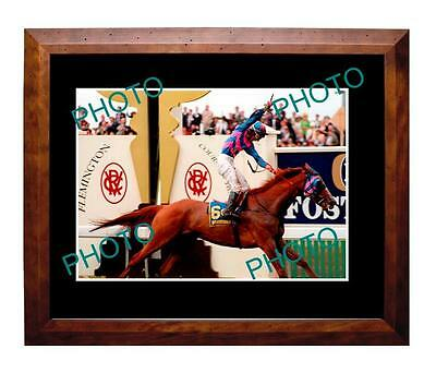 Doriemus 1995 Melbourne Cup Win Large A3 Photo