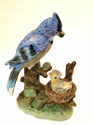 Blue Jay Porcelain Bird with Baby on Nest Figurine Price Import Japan