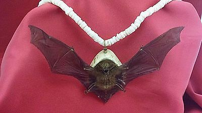 SALE*Taxidermy Bat Necklace-Wings spread--witch-gothic-mystical-voodoo-Halloween