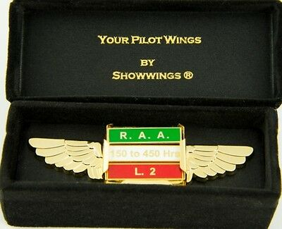 Gold Pilot Wings