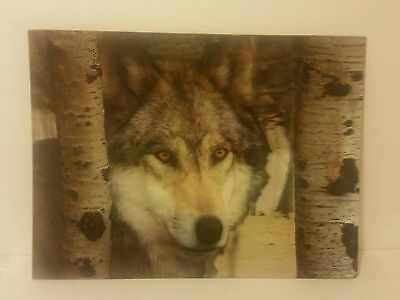"3D Lenticular WOLF IN THE WOODS 11.25"" x 15.25"" Poster Print ■READY TO FRAME■"