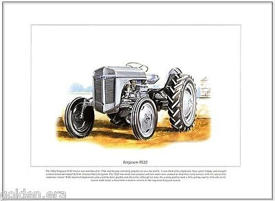 FERGUSON TE20 TRACTOR - FINE ART PRINT - Classic Little Grey Fergie Illustration
