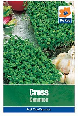 2 PACKS of CRESS Common VEGETABLE Garden SEEDS