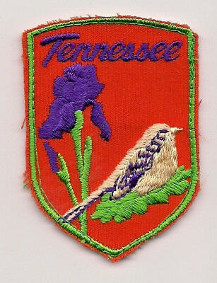 State Of Tennessee Souvenir Patch