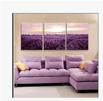 Set of Three Canvas Paint By Number Kit 3*40*50cm Lavender S4 F3P028 AU STOCK