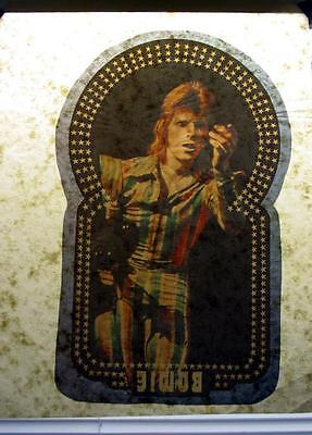 vtg David Bowie concert tour glam rock ziggy stardust T-Shirt Iron-On Transfer 5