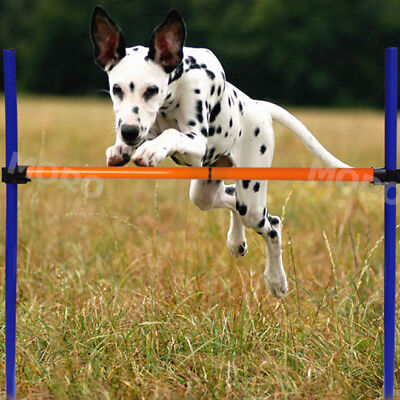 Dog Agility Training Bar Equipment Pet Show Exercise Puppy Jump Hoop Tunnel US