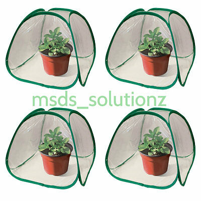 4Pcs Pop Up GreenHouse Mini Plant Cover Green House Indoor/Outdoor/Patio/Home