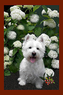Westie Joyful Westie Garden Flag Free Ship Usa  Rescue