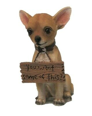 YOU WANT SOME OF THIS Chihuahua Figurine Statue