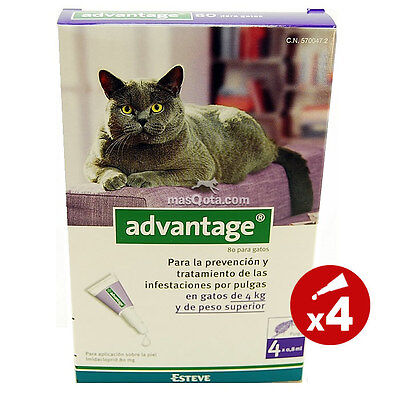 Advantage Gatos (4 - 8 Kg), Pipetas Antipulgas - 4 Pipetas