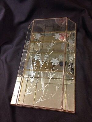Antique  Soldered BRASS & ETCHED GLASS DISPLAY CASE MIRROR BACK ETCHED Floral
