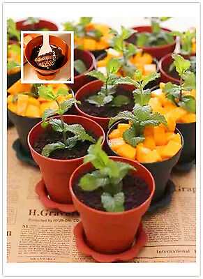 20 x DIY Cake Baking Cup Pot Shape Cake Cup Muffin Liners + Shovel Spoon +Cover