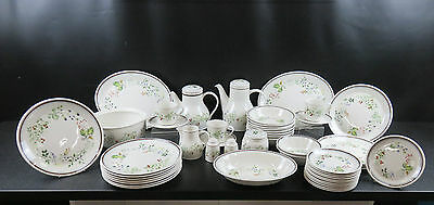 Royal Albert Bitter Sweet Country Garden 50 Piece Part Dinner Set