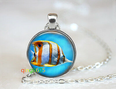 Butterfly fish Sea life glass dome Tibet silver Chain Pendant Necklace wholesale