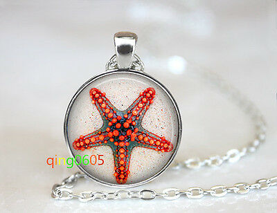 Starfish in the sand glass dome Tibet silver Chain Pendant Necklace wholesale