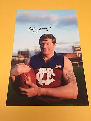 Kevin Murray Fitzroy Football Club Hand Signed Huge 18 X 12 Inch Photo