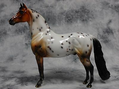 Peter Stone * DAH Santa Fe Morgan * Bay Appaloosa Traditional Model Horse