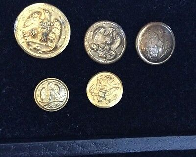 Vintage Estate Military Button Lot Of 5 Brass Metal Gold Tone  Buttons