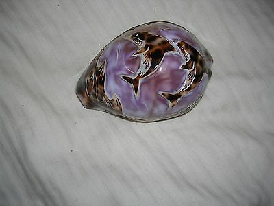 Neat Dolphin Carved Shell