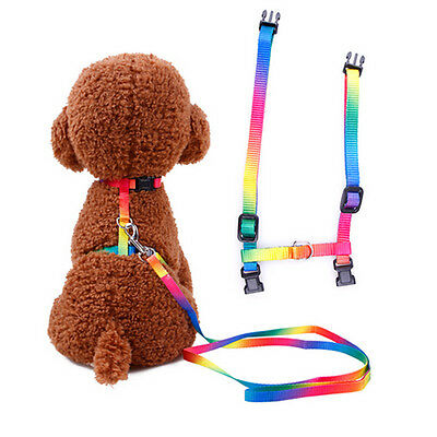 Dog Leash Pet Collar Retractable Lead Puppy Cat Belly Strap Harness Adjustable