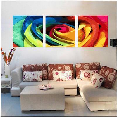 Set of Three Canvas Paint By Number Kit 3*40*50cm Flower F3P026 S4 AU STOCK