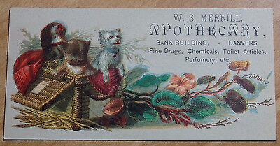 1800's Victorian Trade Card W S Merrill Apothecary Bank Building Danvers Mass
