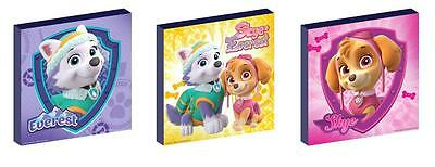 PAW PATROL skye and everest CANVAS ART BLOCKS/ WALL ART PLAQUES/PICTURES