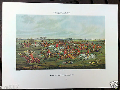 10 Wholesale Antique Vintage Sporting Fox Hunting Hound Print Picture Rare Horse