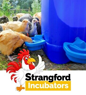 NEW MaxiCup Automatic Plastic Drinker for Poultry and Waterfowl