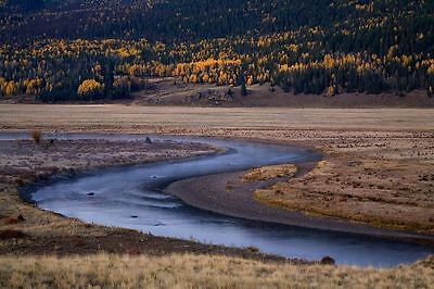 HUGE! 5 ACRES of COLORADO LAND, ROAD FRONTAGE CLOSE TO RIVER OWNER FINANCING!