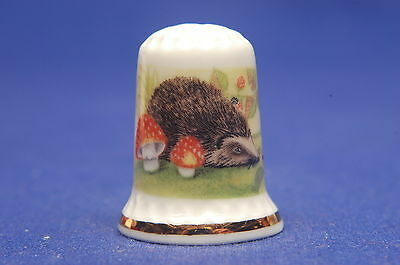 TCC Hampshire Hall Hedgehogs China Thimble B/80