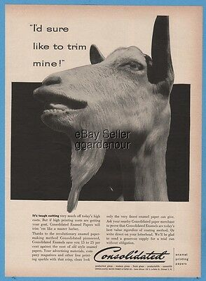 1954 Consolidated Water Power & Paper Company Goat Beard Trim Photo Ad