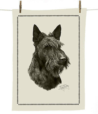 Mike Sibley Scottish Terrier dog breed 100% cotton tea towel - 67 x 47cm - gift