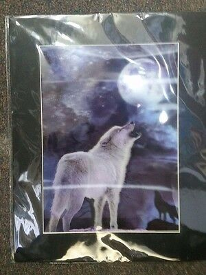 Howling Wolf 3D Picture