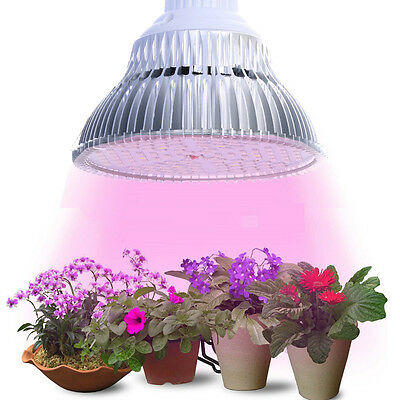 E27 10/24/48/90W LED Grow Light Bulb Lamp for Plant Hydroponics Fruit 220V 110V