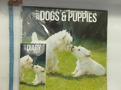 Calendar 2017 Dogs And Puppies  New Sealed