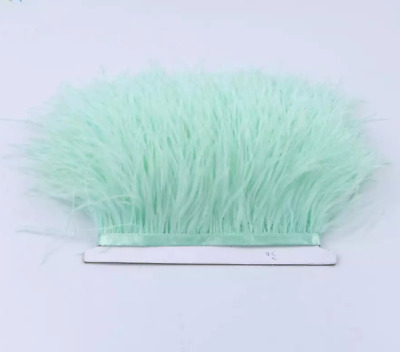 Soft Mint Green Ostrich Feather Fringe Ribbon Trim (price for 30cm) DIY Craft