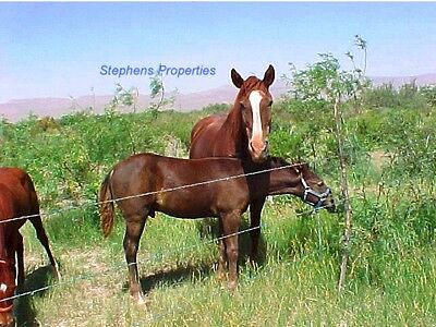 5 Acres West Texas Land - Great For Horses - Hunting - Homesite--$82 Mo / Terms