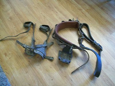 Electrical Lineman's Climbing Belt, Safety Belt, & Gaffes (Climbing Spikes)