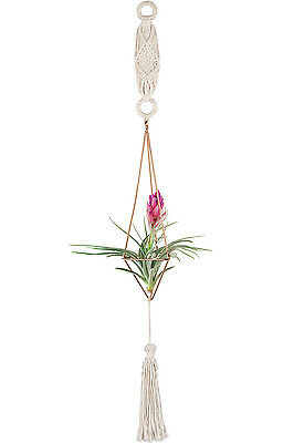 Mkono Himmeli Macrame Hanging Air Plant Holder Set Geometric Decor (with Chain)