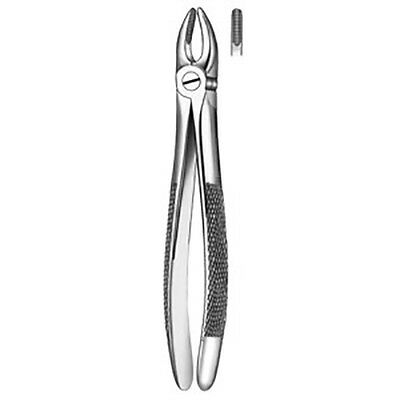 Carl Martin Dental Forceps #1 Upper Incisors And Canines.