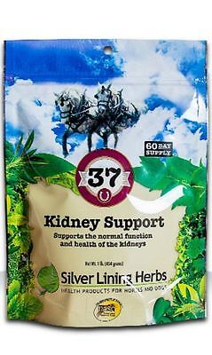 SILVER LINING HERBS #37 Kidney Support Horse Aid Waste Back Joint Equine 1 Pound