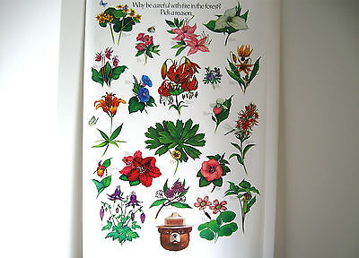 "Vintage U. S. Forest Service Poster-Be Careful-Pick a Reason-Flowers 20x30"" 1985"