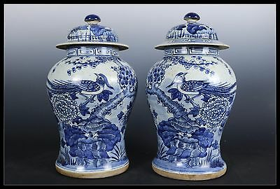 A pair Fine Beautiful Chinese Blue and white Porcelain Flowers&birds Vase Pot
