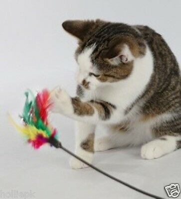 Bright Coloured Feather Teaser Cat Kitten Play Rod Toy 50 Cm 4106