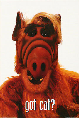 Lot Of 2  Posters :tv: Alf - Alf Got Cat ?   Free Shipping !    #24-099   Rp76 R
