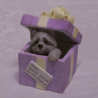 Quarry Critters Raccoon in Gift Box All Wrapped Up You've Got Me Ol Store Stock