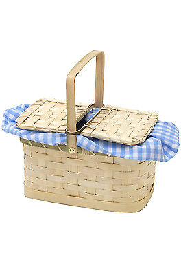 Dorothy Wizard of OZ Blue/White Gingham Basket Costume Accessory
